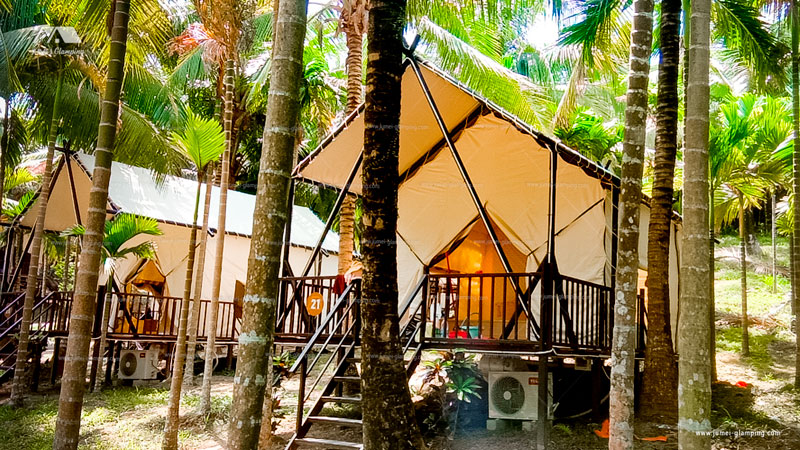 Glamping Safari Tent in the Coconut Forest